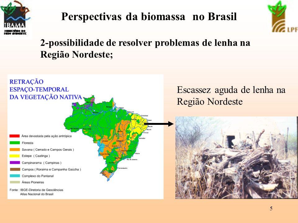 Perspectivas da biomassa no Brasil