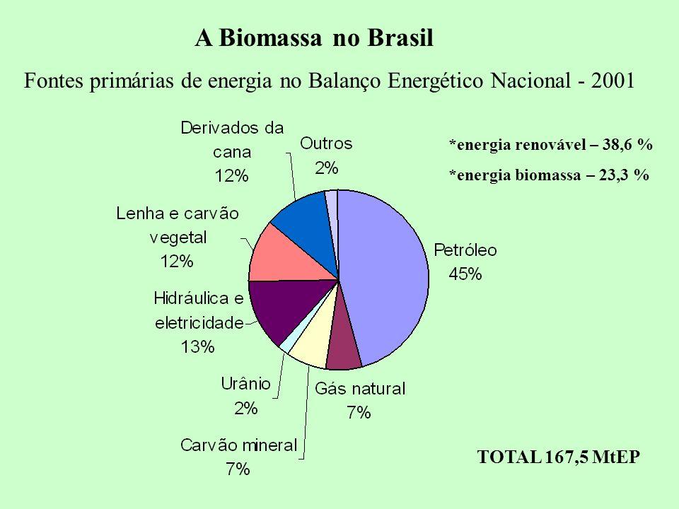 A Biomassa no Brasil Fontes primárias de energia no Balanço Energético Nacional - 2001. *energia renovável – 38,6 %