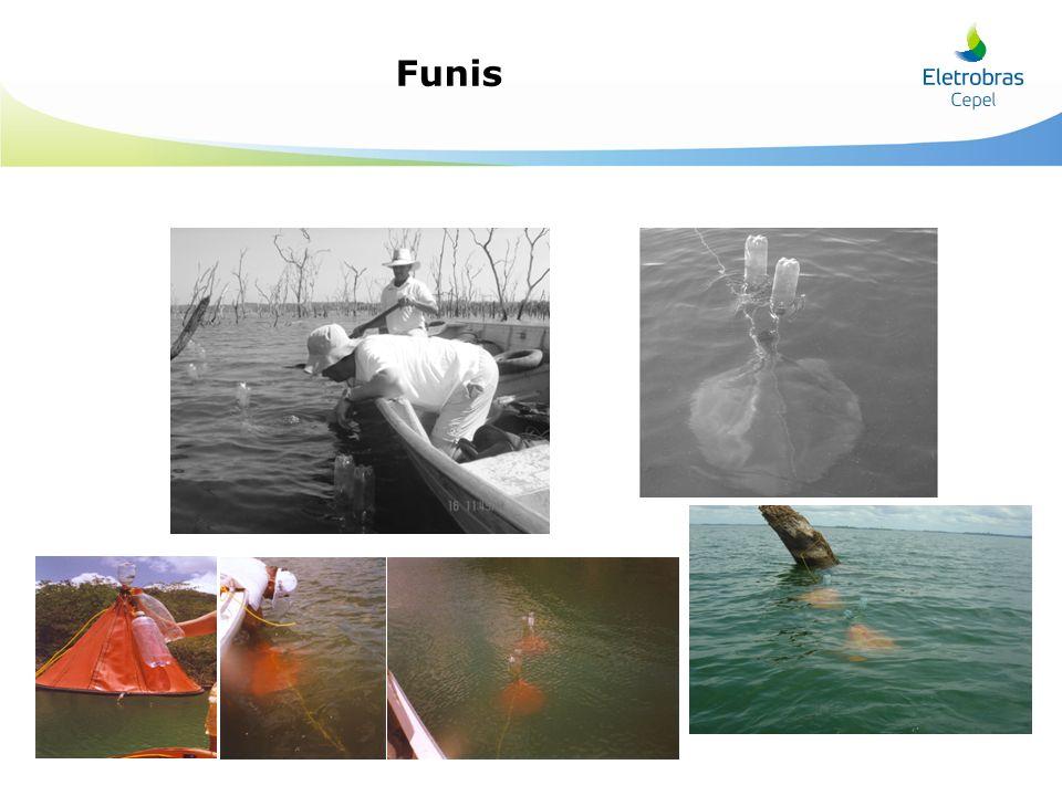 Funis Slide exemplificando título + itemização + fotos com legendas.