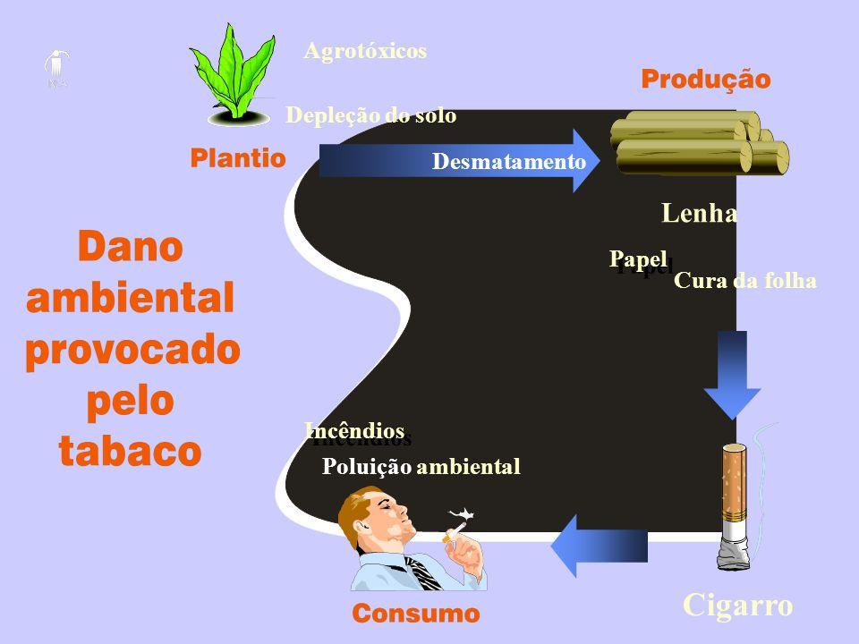 Cigarro Lenha Agrotóxicos Depleção do solo Desmatamento Papel