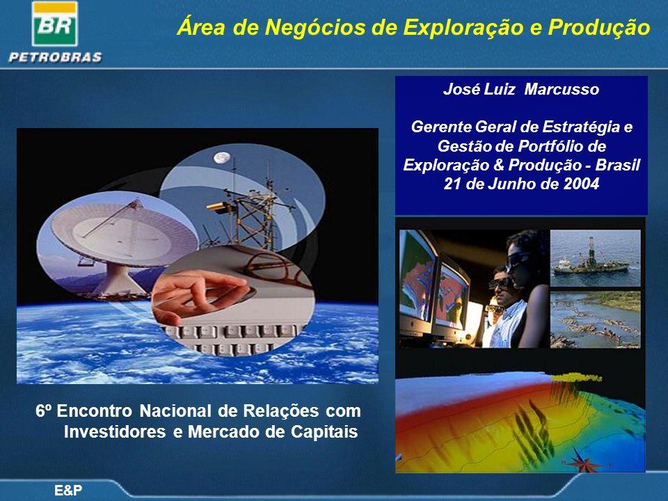 Área de Negócios de Exploração e Produção