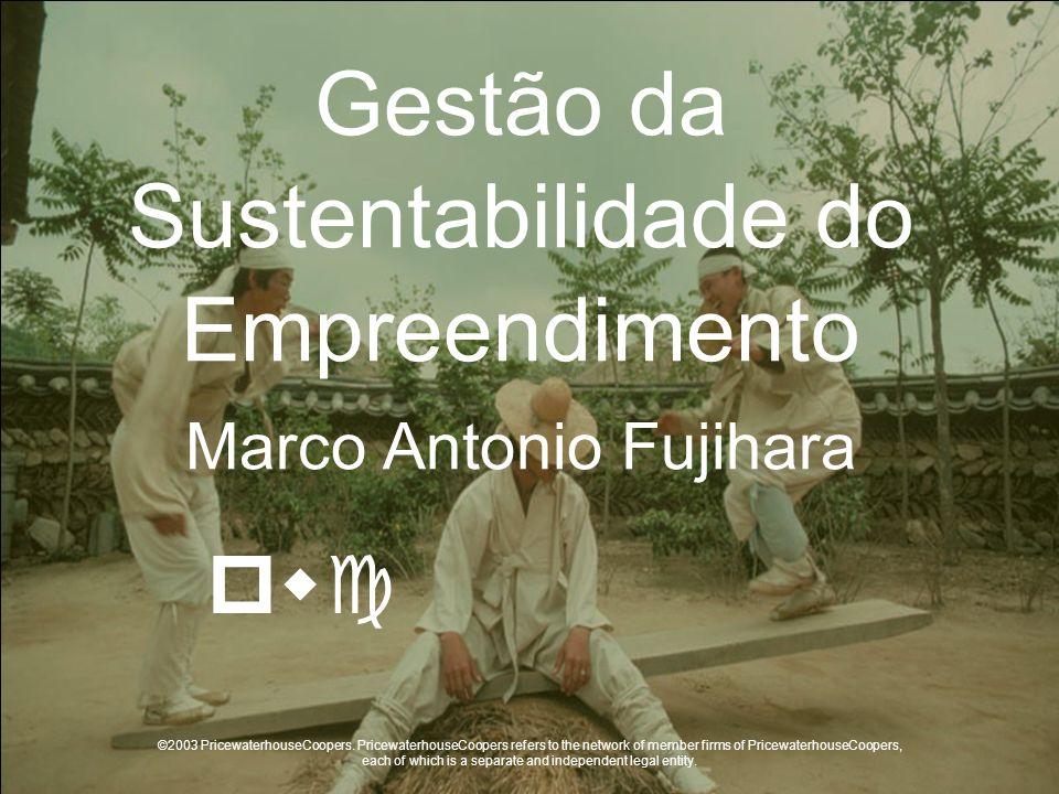Gestão da Sustentabilidade do Empreendimento Marco Antonio Fujihara