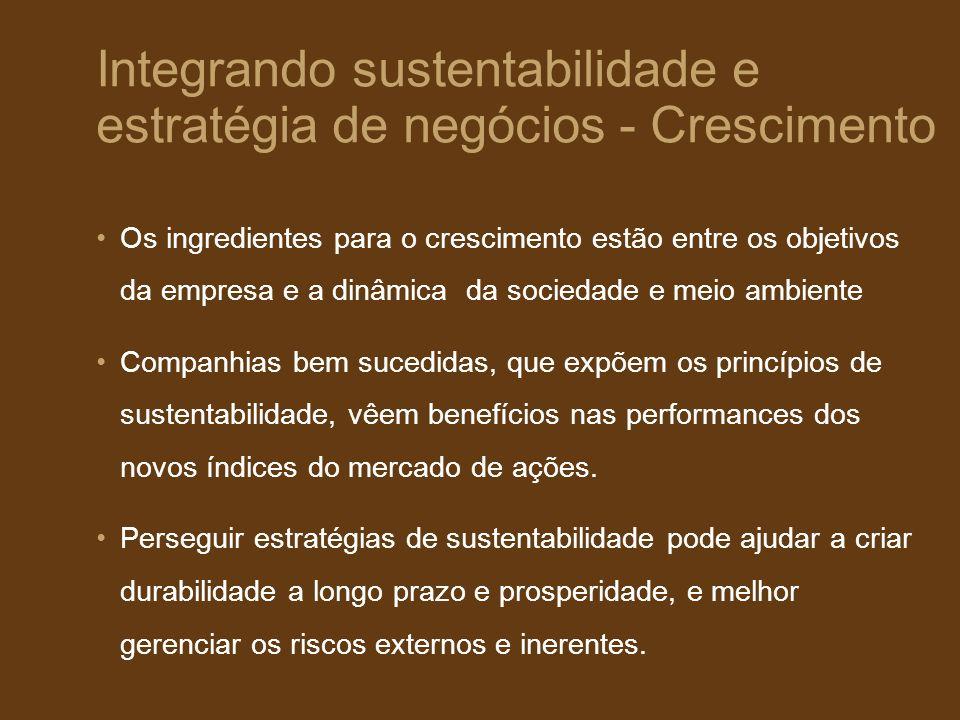 Integrando sustentabilidade e estratégia de negócios - Crescimento