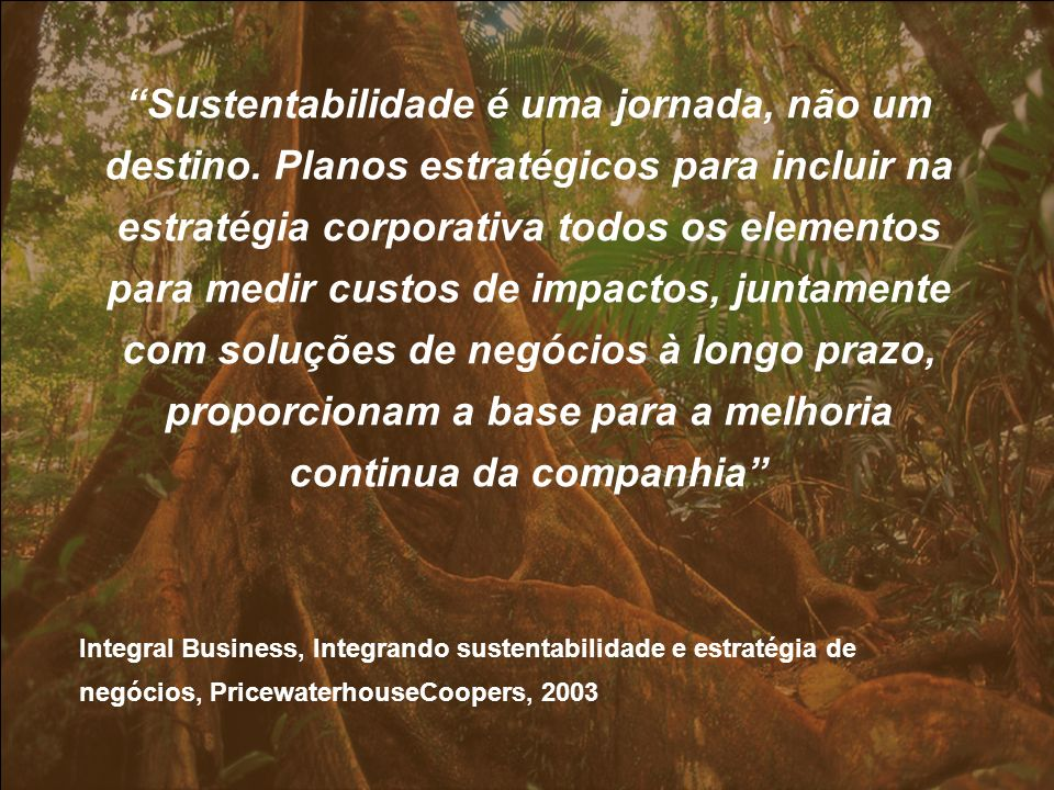 Sustentabilidade é uma jornada, não um destino