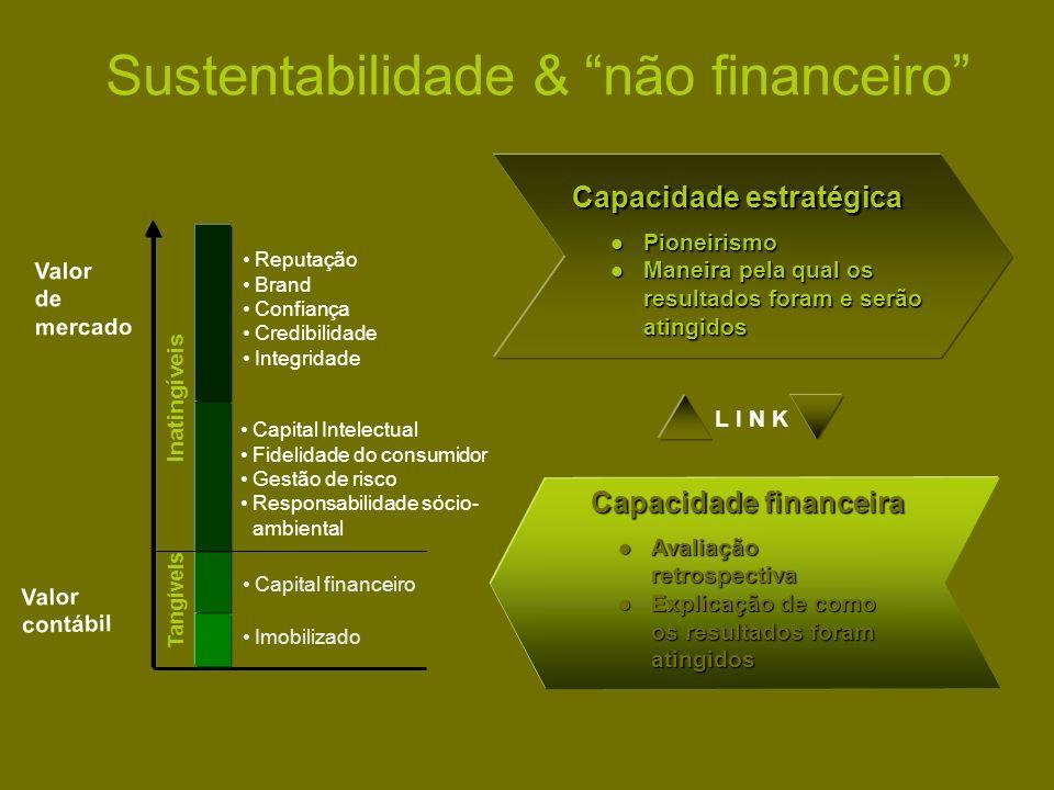 Sustentabilidade & não financeiro