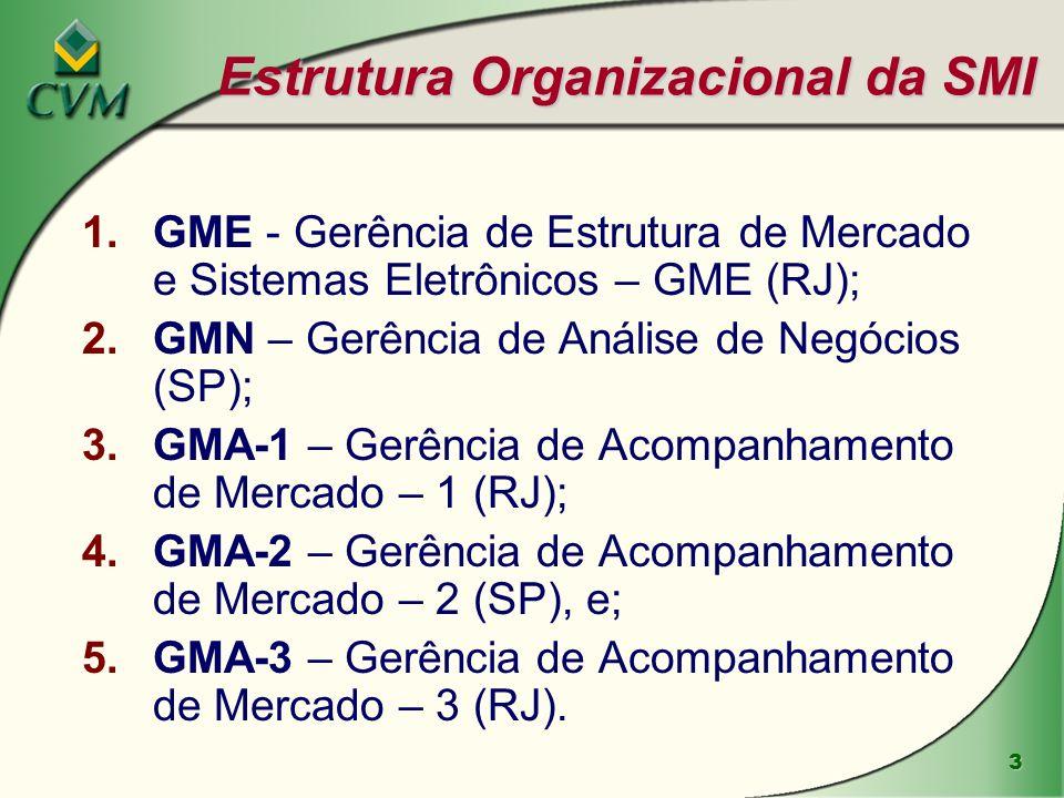 Estrutura Organizacional da SMI