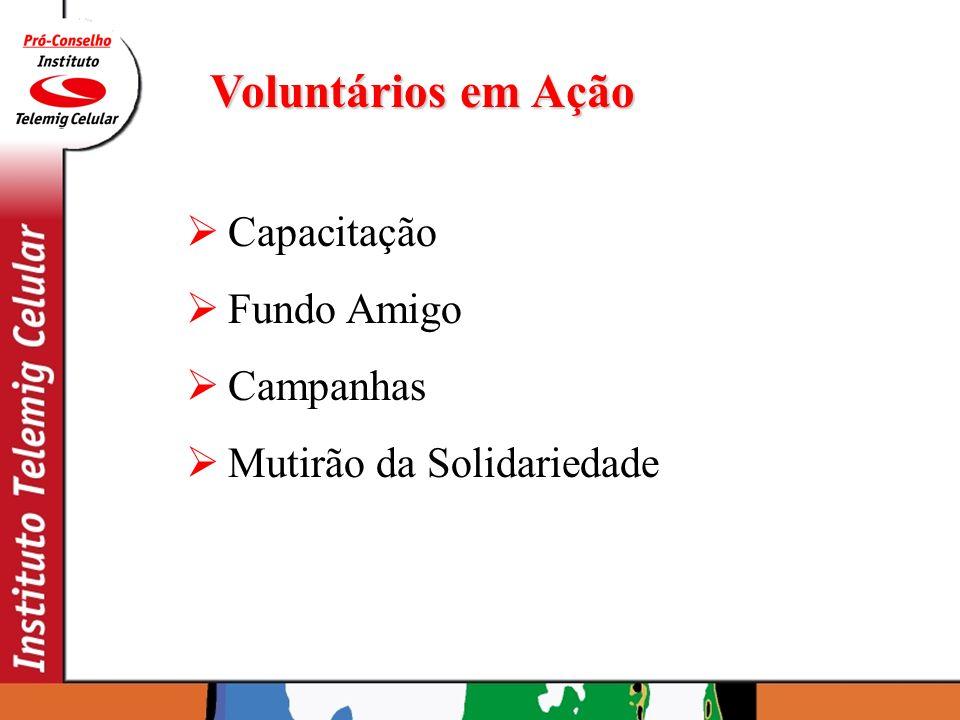 Voluntários em Ação Capacitação Fundo Amigo Campanhas