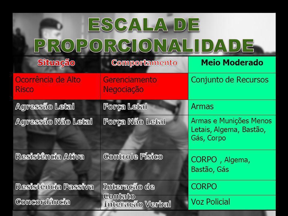 ESCALA DE PROPORCIONALIDADE