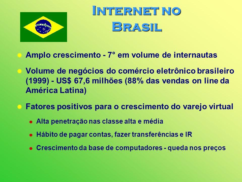 Internet no Brasil Amplo crescimento - 7° em volume de internautas