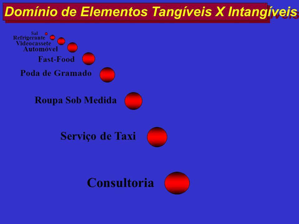 Domínio de Elementos Tangíveis X Intangíveis