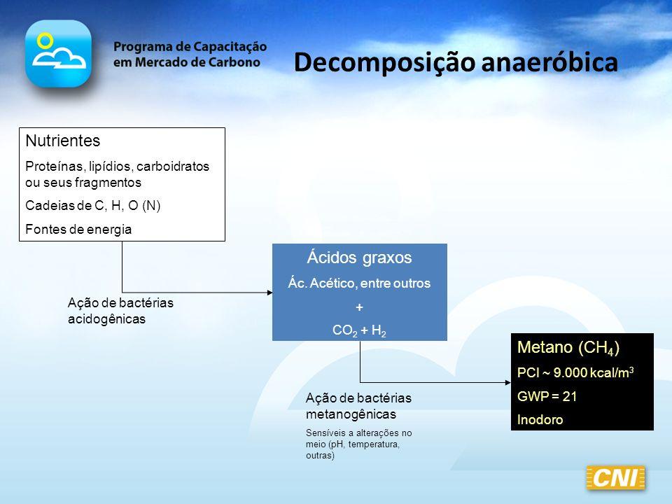 Decomposição anaeróbica