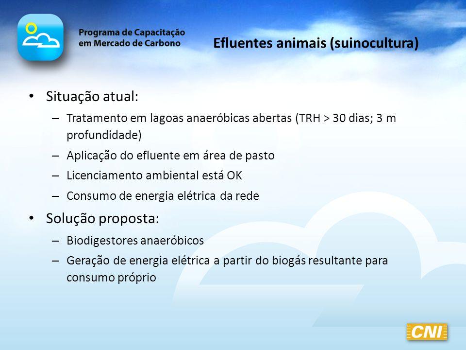Efluentes animais (suinocultura)
