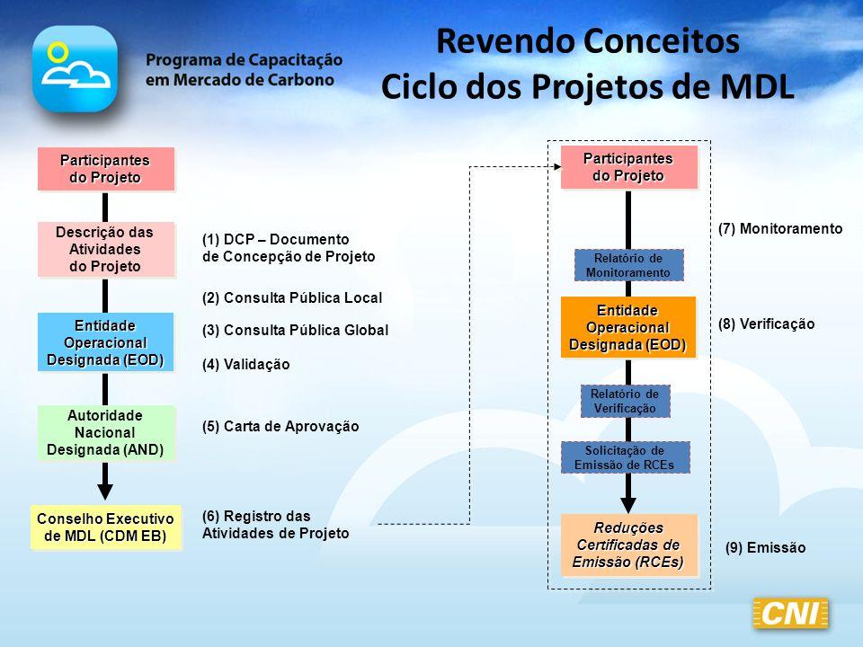 Revendo Conceitos Ciclo dos Projetos de MDL