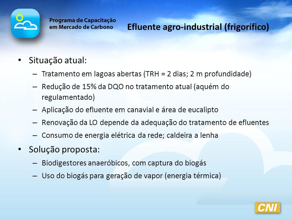 Efluente agro-industrial (frigorífico)