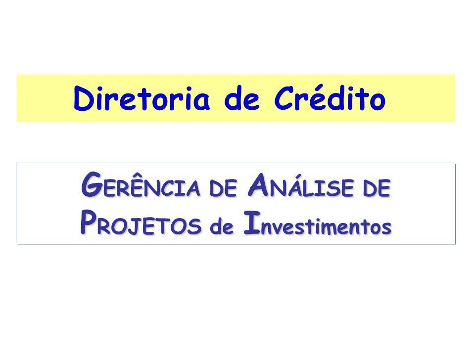 GERÊNCIA DE ANÁLISE DE PROJETOS de Investimentos