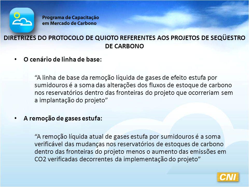 DIRETRIZES DO PROTOCOLO DE QUIOTO REFERENTES AOS PROJETOS DE SEQÜESTRO DE CARBONO