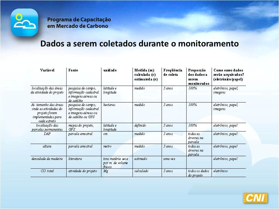 Dados a serem coletados durante o monitoramento