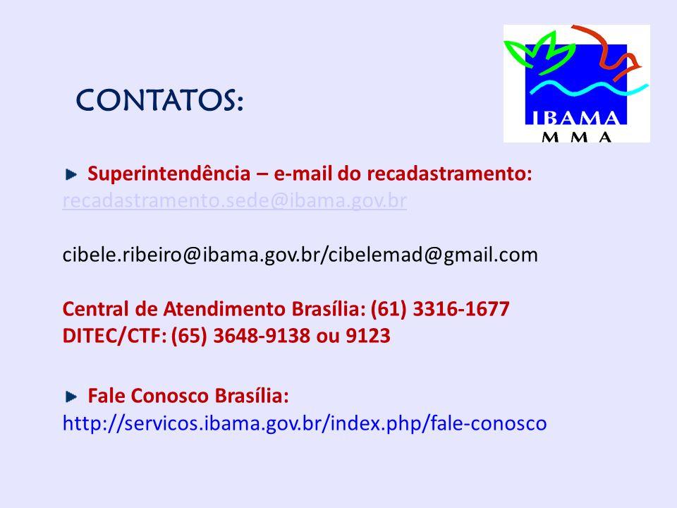 CONTATOS: Superintendência – e-mail do recadastramento: