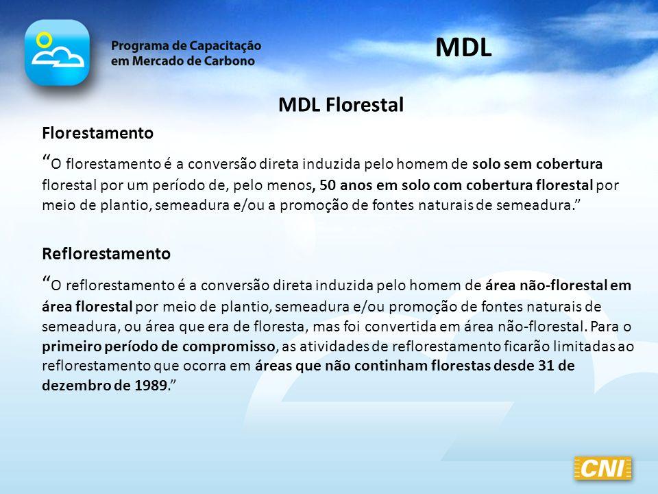 MDL MDL Florestal. Florestamento.