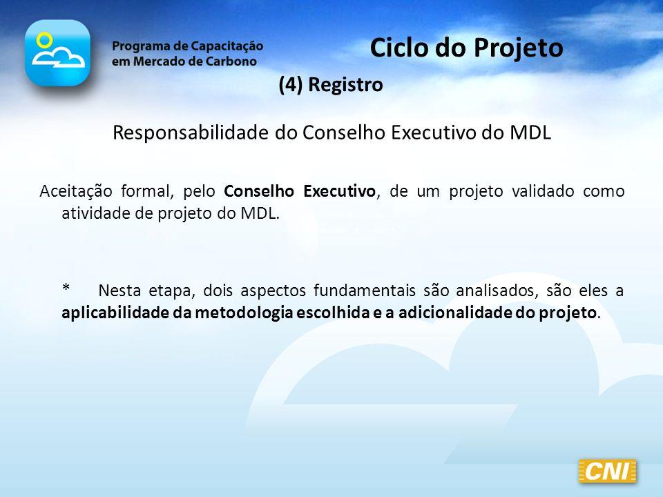 Responsabilidade do Conselho Executivo do MDL