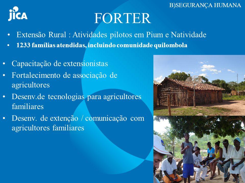 FORTER Extensão Rural : Atividades pilotos em Pium e Natividade