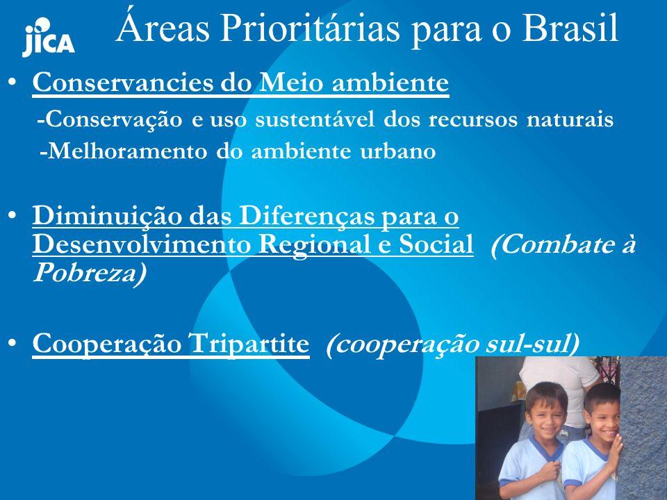 Áreas Prioritárias para o Brasil