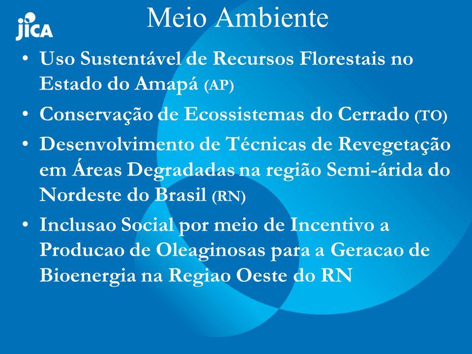 Meio Ambiente Uso Sustentável de Recursos Florestais no Estado do Amapá (AP) Conservação de Ecossistemas do Cerrado (TO)