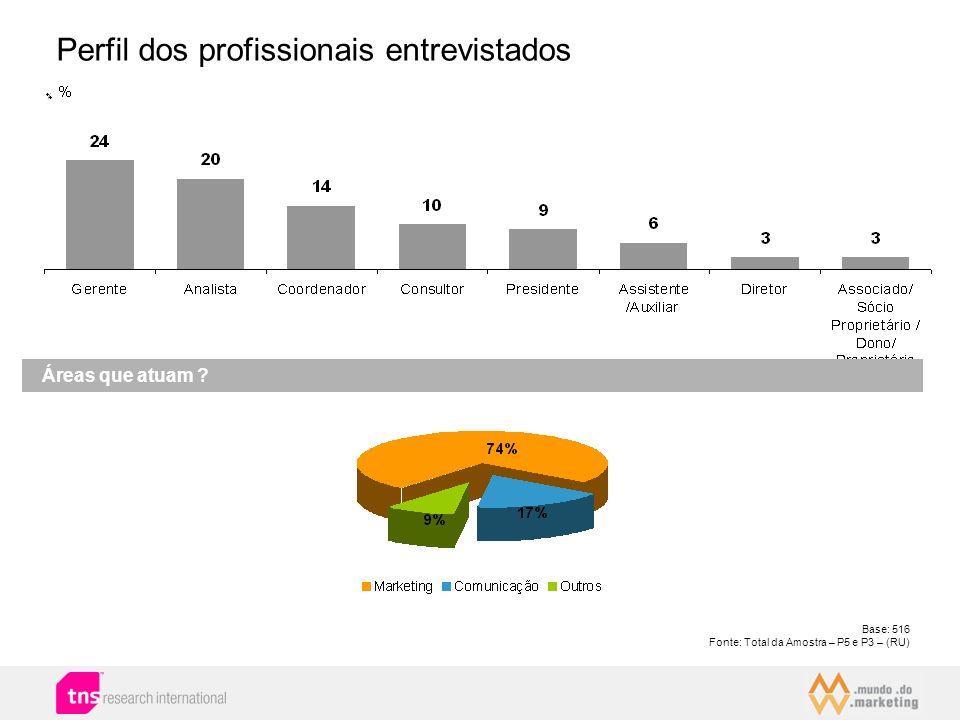 Perfil dos profissionais entrevistados
