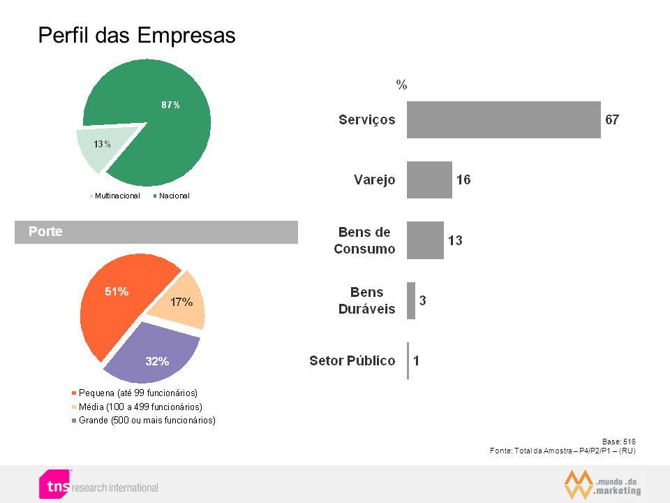 Perfil das Empresas Porte 20 Base: 516