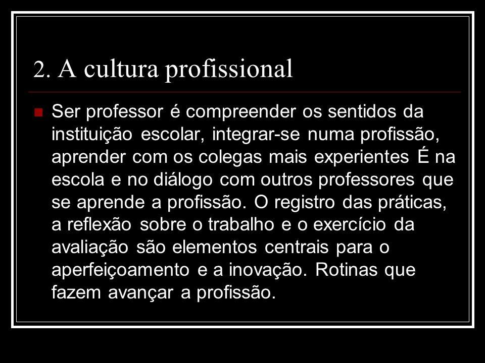 2. A cultura profissional