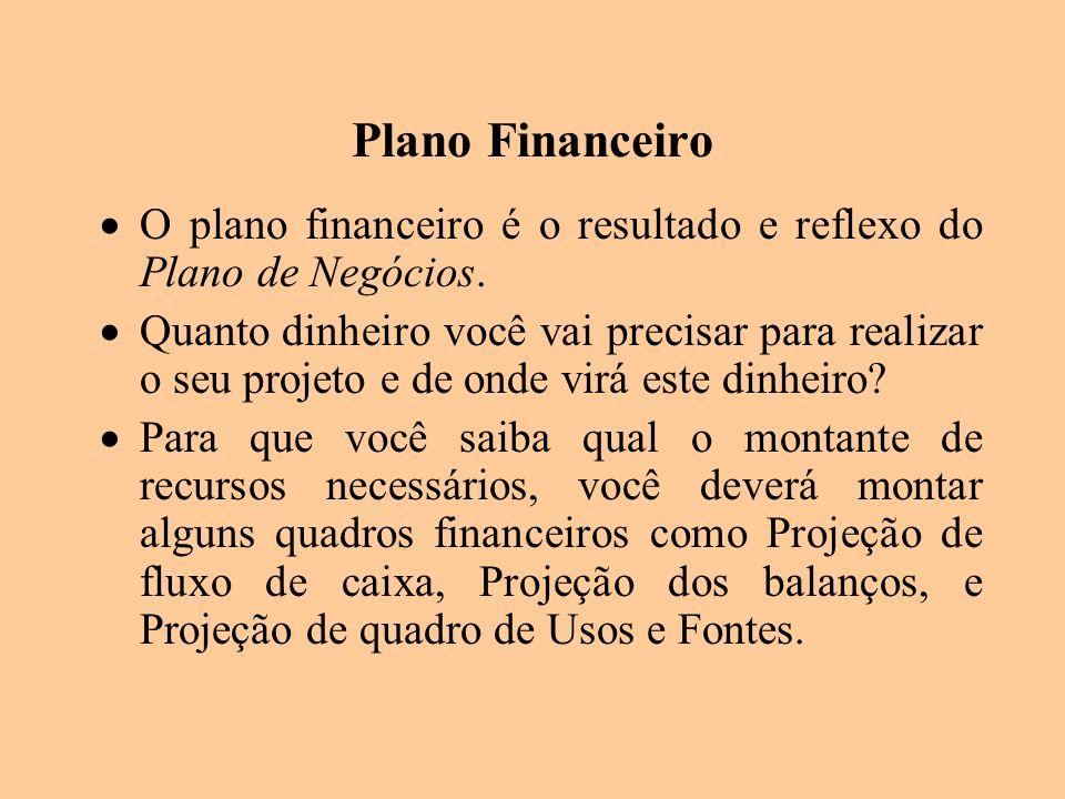 Plano Financeiro O plano financeiro é o resultado e reflexo do Plano de Negócios.