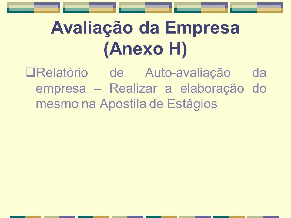 Avaliação da Empresa (Anexo H)