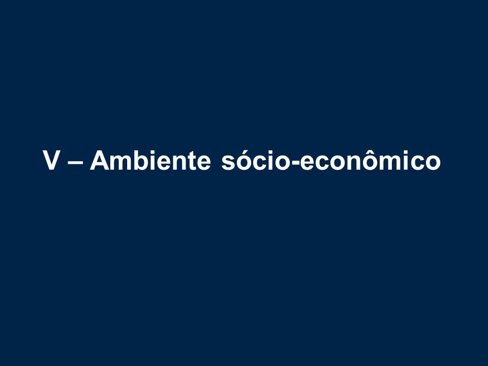 V – Ambiente sócio-econômico