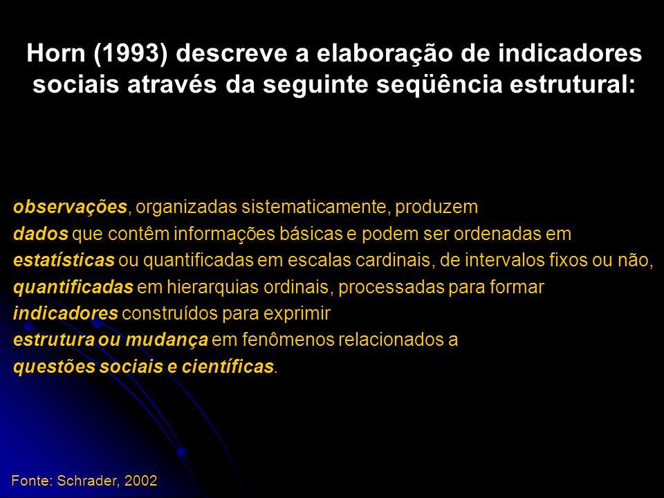 Horn (1993) descreve a elaboração de indicadores sociais através da seguinte seqüência estrutural: