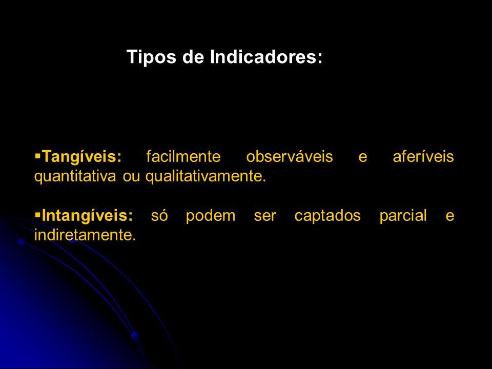 Tipos de Indicadores: Tangíveis: facilmente observáveis e aferíveis quantitativa ou qualitativamente.