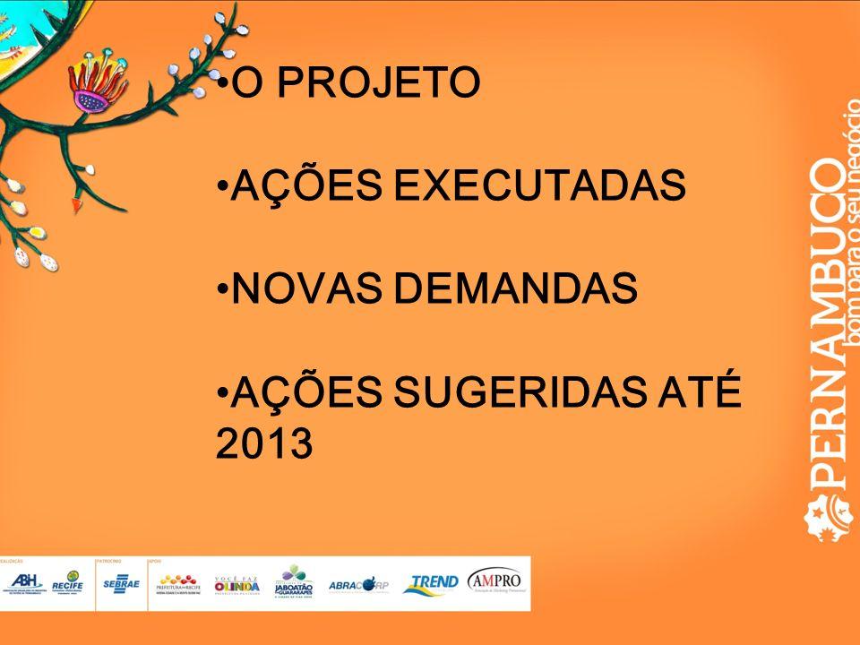 O PROJETO AÇÕES EXECUTADAS NOVAS DEMANDAS AÇÕES SUGERIDAS ATÉ 2013