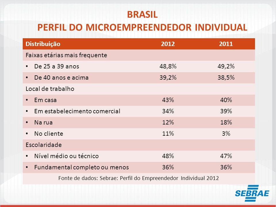 BRASIL PERFIL DO MICROEMPREENDEDOR INDIVIDUAL