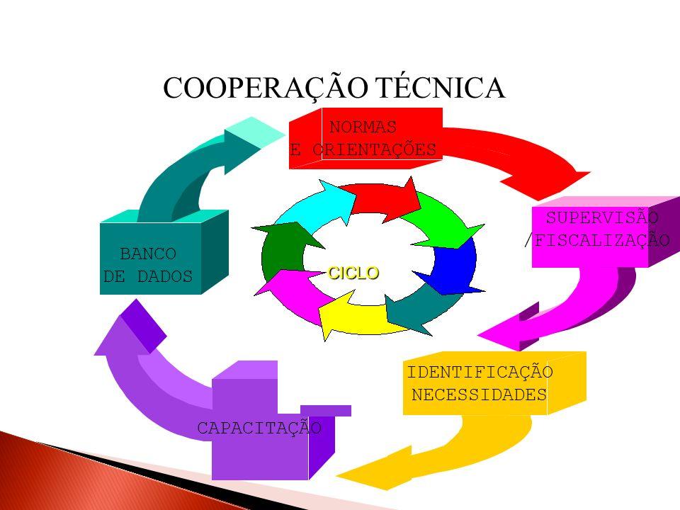 COOPERAÇÃO TÉCNICA NORMAS E ORIENTAÇÕES SUPERVISÃO /FISCALIZAÇÃO BANCO