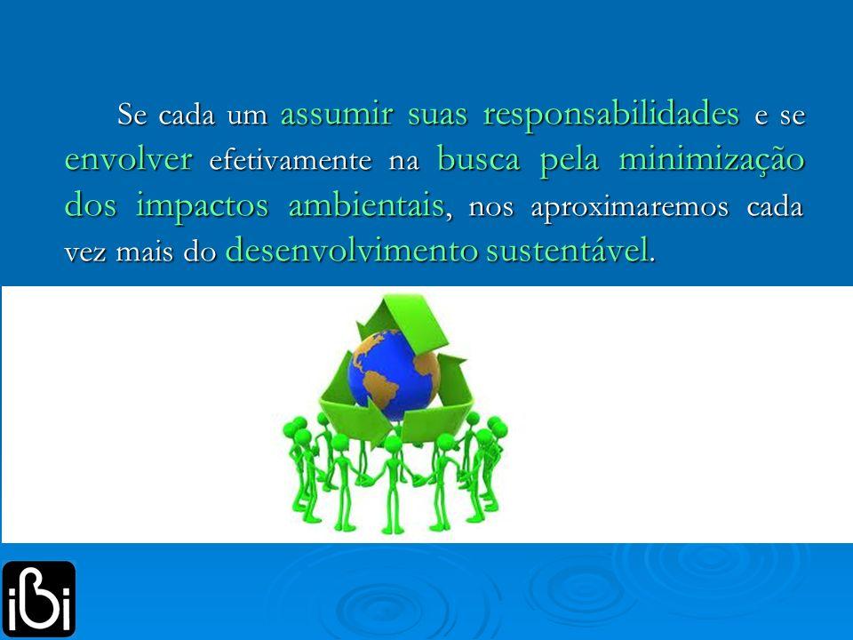Se cada um assumir suas responsabilidades e se envolver efetivamente na busca pela minimização dos impactos ambientais, nos aproximaremos cada vez mais do desenvolvimento sustentável.