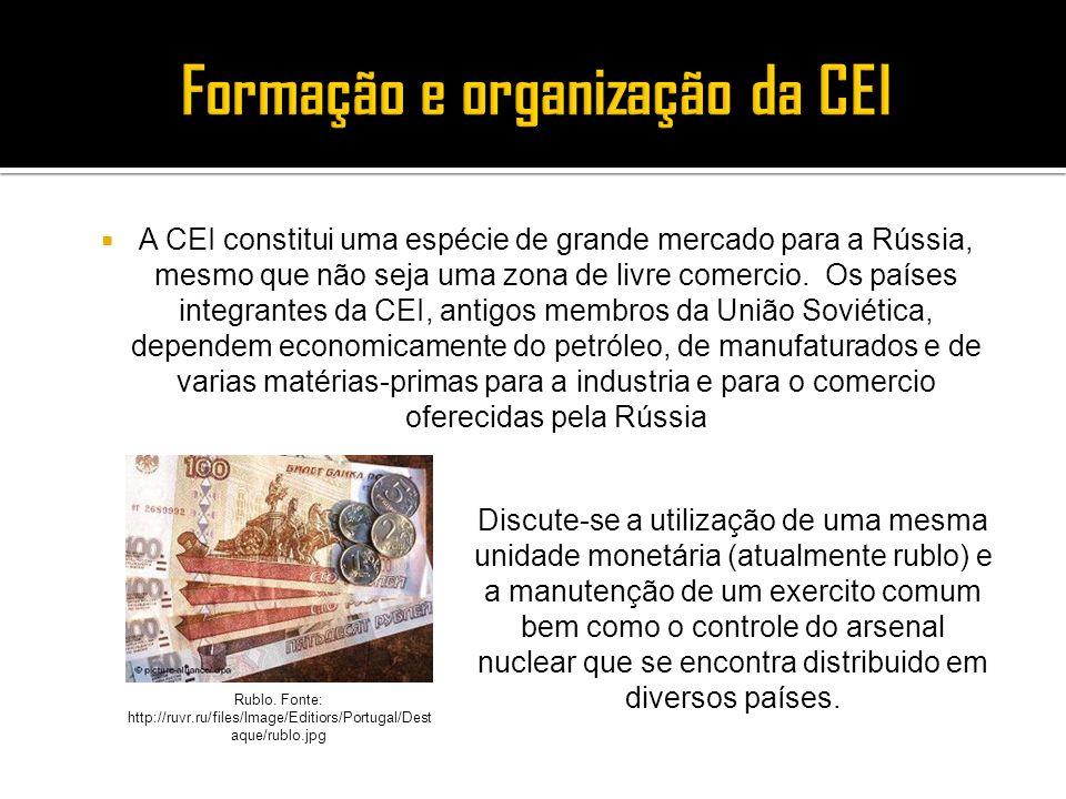 Formação e organização da CEI