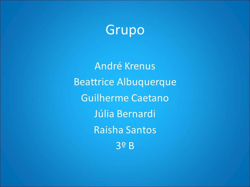 Grupo André Krenus Beattrice Albuquerque Guilherme Caetano Júlia Bernardi Raisha Santos 3º B
