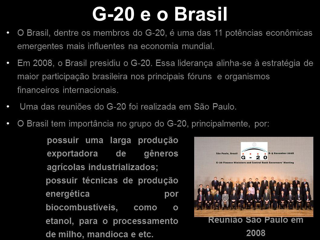 G-20 e o Brasil O Brasil, dentre os membros do G-20, é uma das 11 potências econômicas emergentes mais influentes na economia mundial.