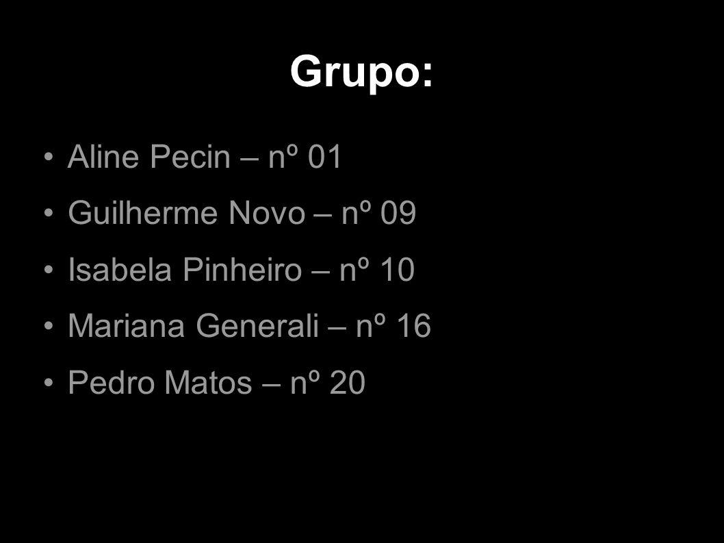 Grupo: Aline Pecin – nº 01 Guilherme Novo – nº 09