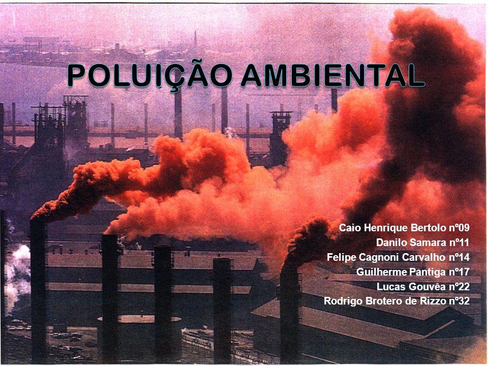 Poluição Ambiental Caio Henrique Bertolo nº09 Danilo Samara nº11