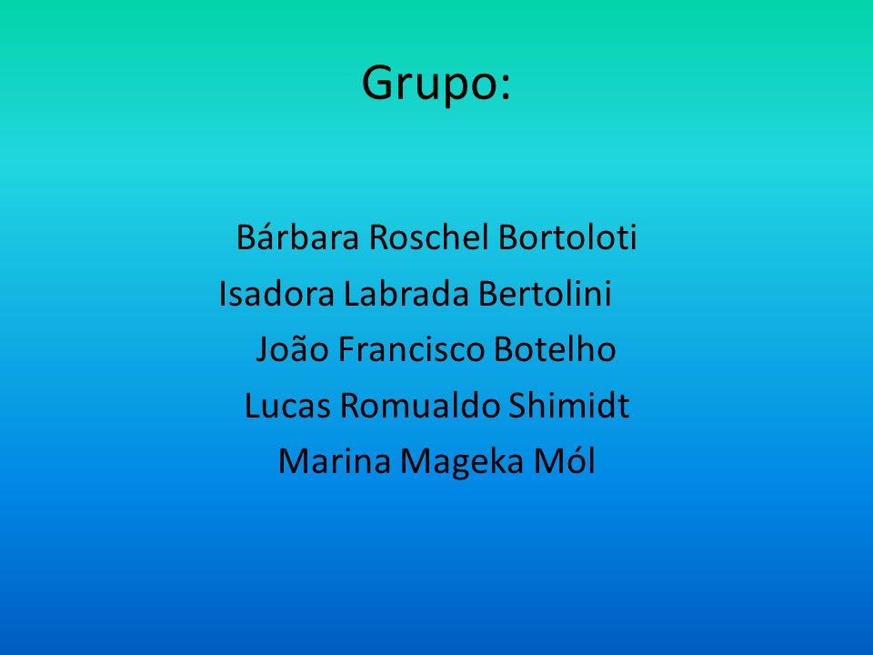 Grupo: Bárbara Roschel Bortoloti Isadora Labrada Bertolini João Francisco Botelho Lucas Romualdo Shimidt Marina Mageka Mól