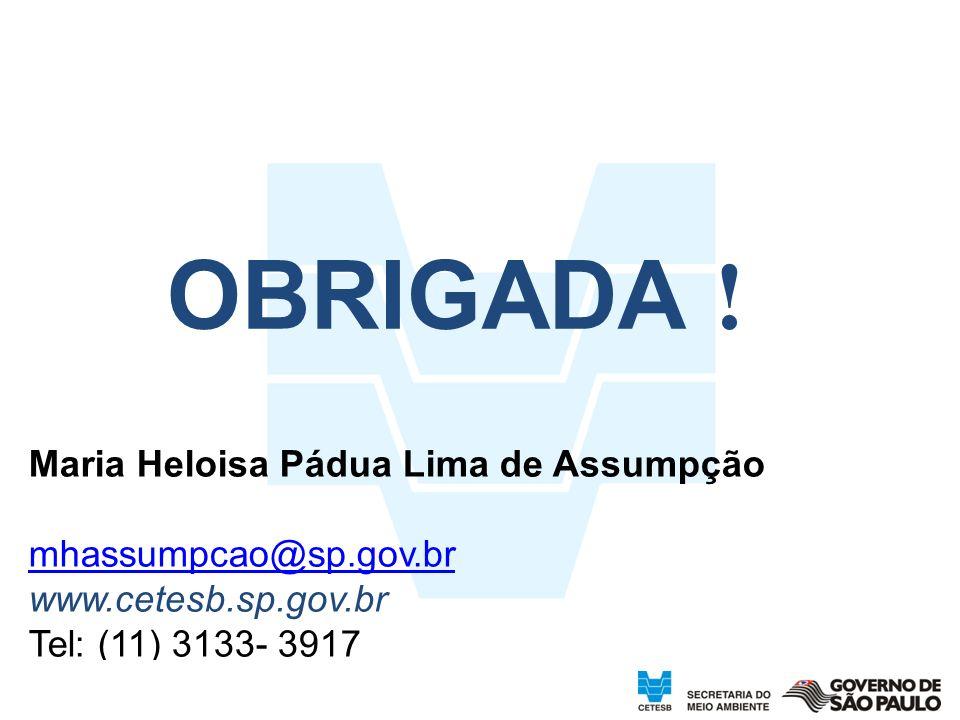 OBRIGADA ! Maria Heloisa Pádua Lima de Assumpção mhassumpcao@sp.gov.br