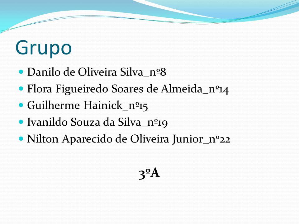 Grupo 3ºA Danilo de Oliveira Silva_nº8