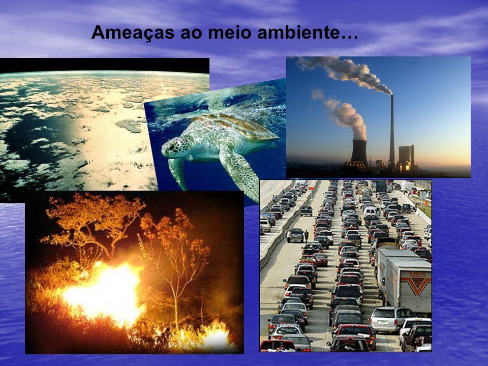 Ameaças ao meio ambiente…