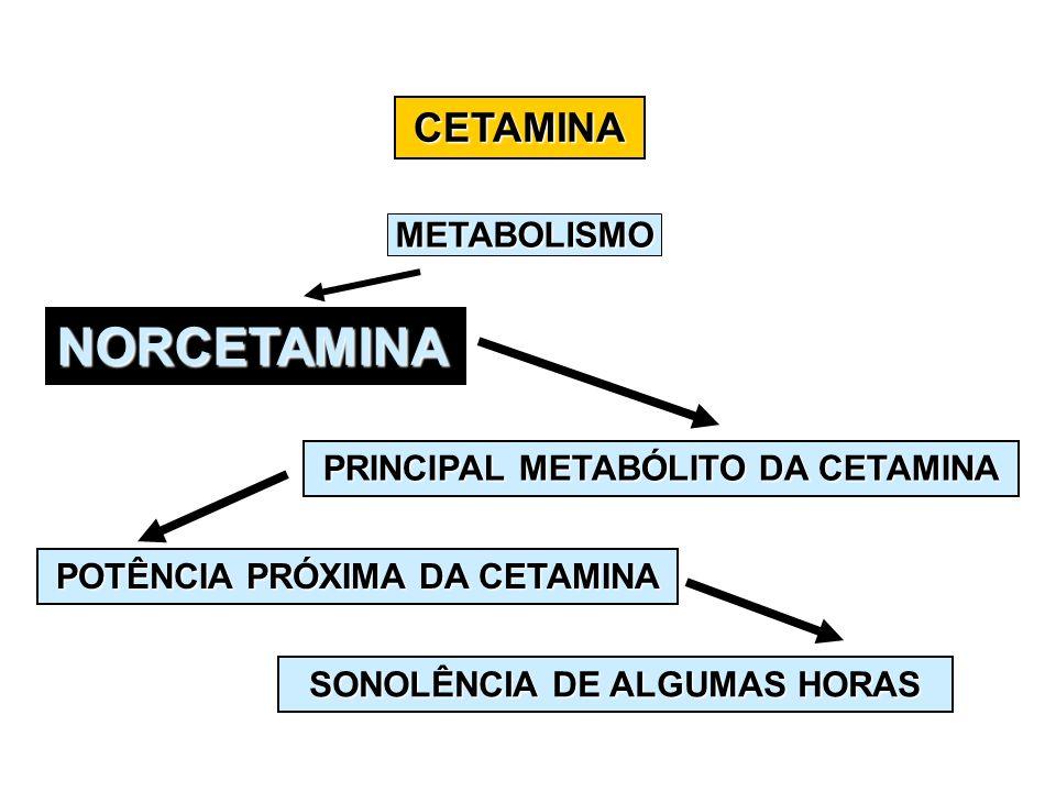 NORCETAMINA CETAMINA METABOLISMO PRINCIPAL METABÓLITO DA CETAMINA