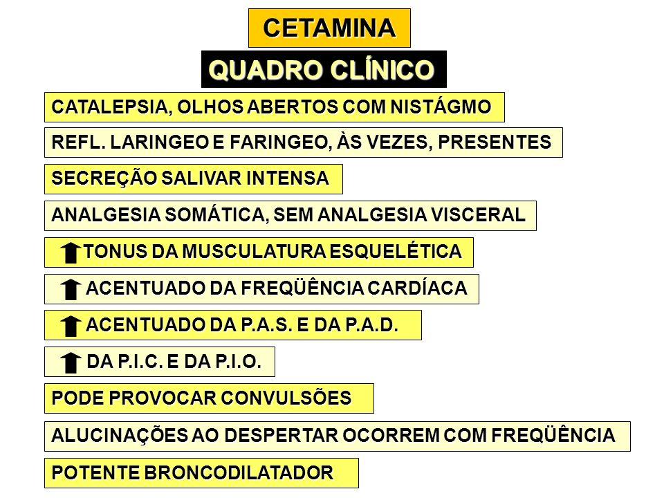 CETAMINA QUADRO CLÍNICO CATALEPSIA, OLHOS ABERTOS COM NISTÁGMO